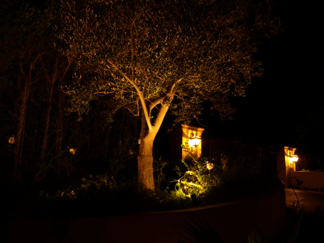 Newbury Park Lighting Landscape Lights
